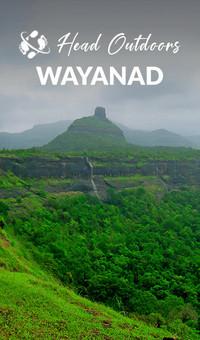 Wayand